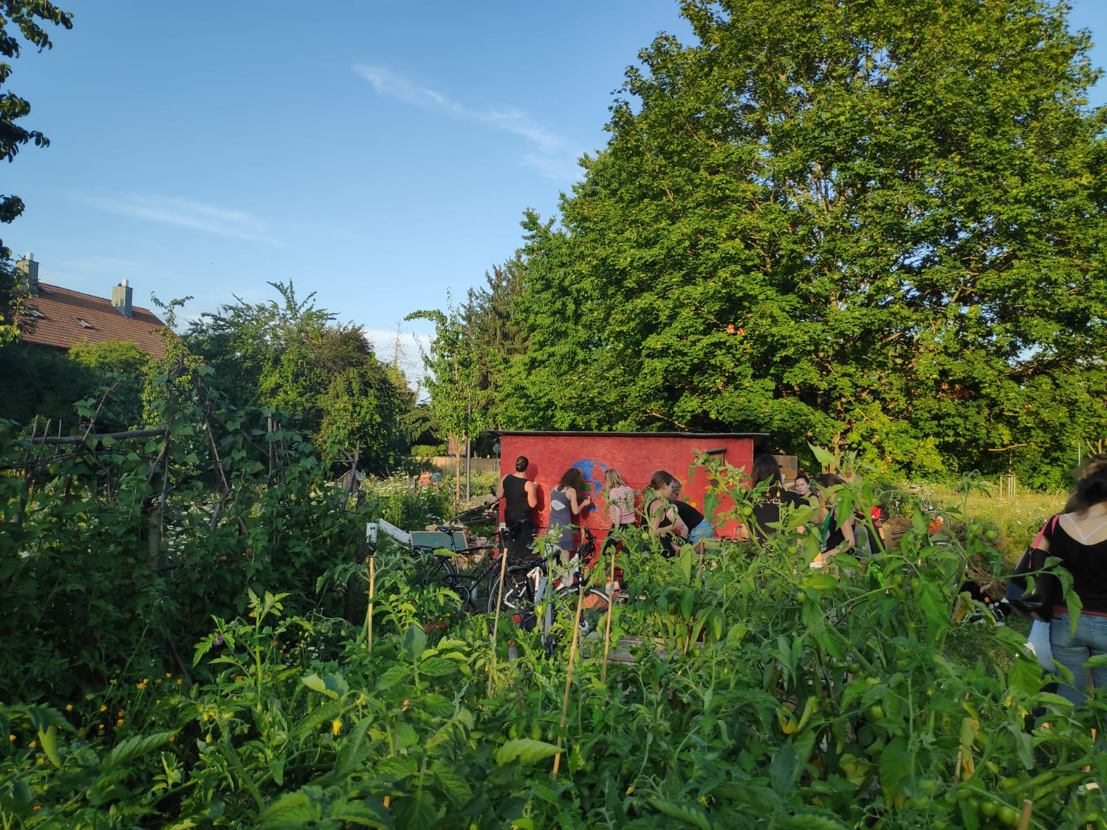 Werkel und Garteltag am Interkulturellen Garten @ Interkultureller Gemeinschaftsgarten