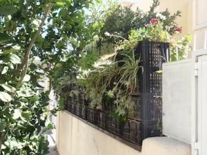 vertikale g rten selber bauen transition regensburg im wandel. Black Bedroom Furniture Sets. Home Design Ideas
