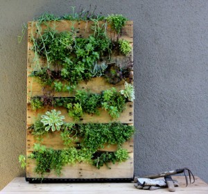 Quelle: http://www.designsponge.com/2011/09/diy-project-recycled-pallet-vertical-garden.html#